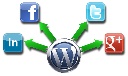 TC Green Media   Automate your Online Marketing